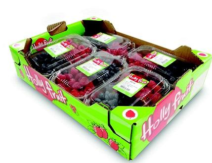 We offer a set of 2 or 3 red fruit in a single punnet (250gr). Our duets and trios are available in all possible combinations to response to the need of our consumers. ** Available in box of 5*250gr