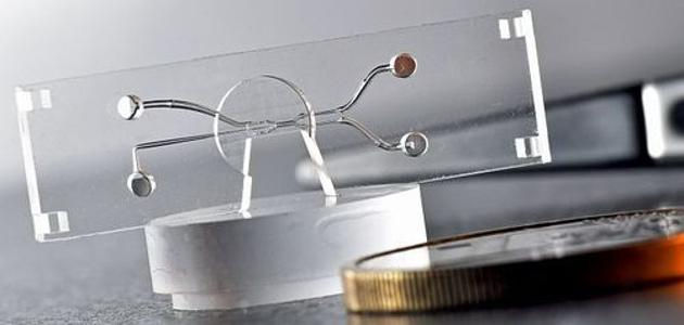 Mikroscanner   3D Drucker