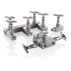 Soft Seated Needle Valves and Manifolds