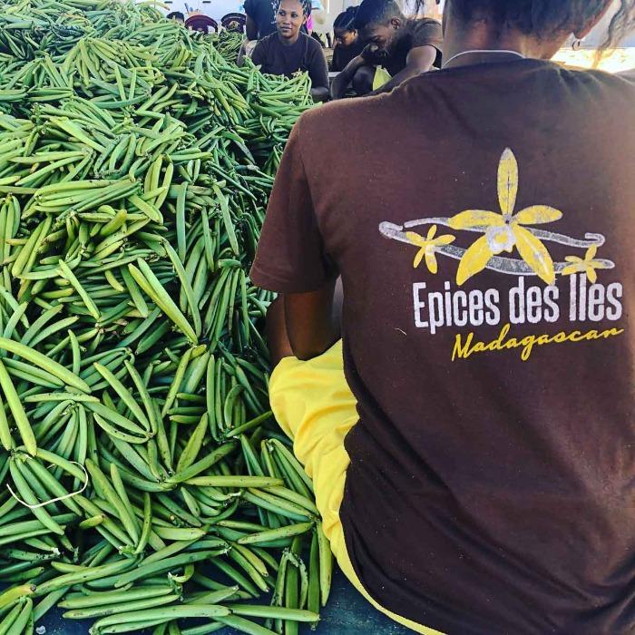Producteur d'épices des îles de Madagascar