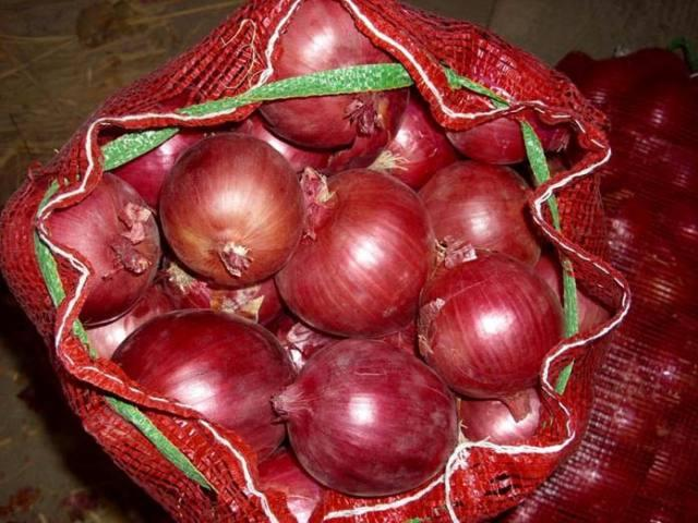 BEST QUALITY FRESH ONIONS AND OTHER FOOD PRODUCTS FOR SALE
