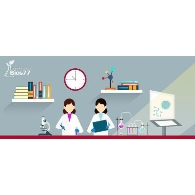 Laboratorio Analisi Bios 77 SICUREZZA SUL LAVORO