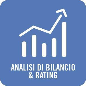 Analisi di Bilancio & Rating  Analizziamo la situazione economico finanziaria dell'azienda evidenziandone equilibri e criticità.