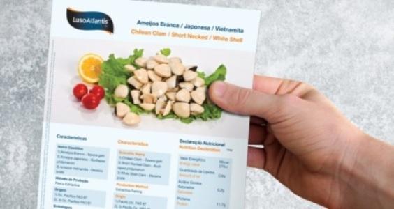LusoAtlantis Brochure - 2