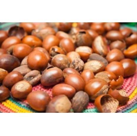 Graines de karité - Cameroun