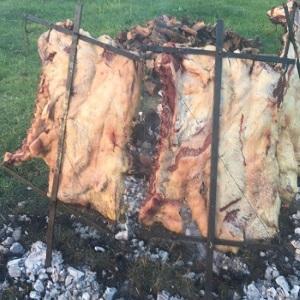 Carbón vegetal para hacer asados al por mayor, de importación