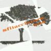 SFILACCIATURA SUD SRL