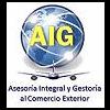 AIG COMEX