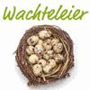 WACHTELHOF