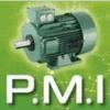 P.M.I. - POLE MOTEURS INDUSTRIELS