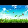 NATURAL & BIOLOGICAL WORLD