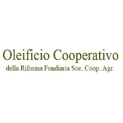 OLEIFICIO COOPERATIVO DELLA RIFORMA FONDIARIA DI LEVERANO