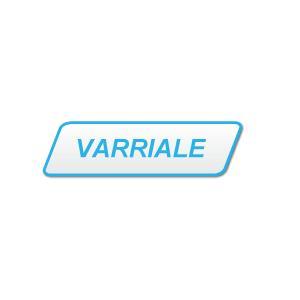RENATO VARRIALE & C.