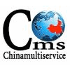 CHINAMULTISERVICE CONSULTING CO. LTD