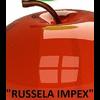 RUSSELA IMPEX PLLC