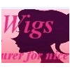 EMIL LACE WIGS & HAIR EXTENSIONS COMPANY