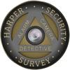 HARPER SECURITY & SURVEY