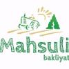 MAHSULI LEGUMES