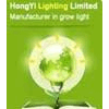 HONGYI LIGHTING LIMITED