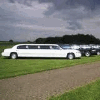 EXECUTIVE LIMOUSINE ORGANIZATION