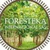 FORESTEKA INTERNACIONAL