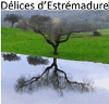 DELICES D'ESTREMADURE
