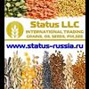 STATUS LLC