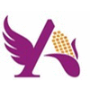 ANGEL STARCH AND FOOD PVT LTD