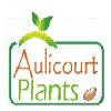 AULICOURT PLANTS