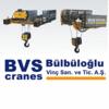 BVS CRANES
