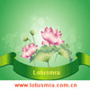 SHANGHAI LOTUSMIA ENVIRONMENTAL TECHNOLOGY CO., LTD.