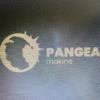 PANGEA MAKINE SAN. VE TIC. A.S.