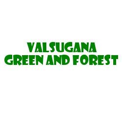 VALSUGANA GREEN AND FOREST S.R.L. SEMPLIFICATA