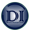 DIVERS GROUP INC