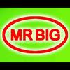 WEIFANG MR BIG TRADING CO.,LTD