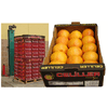 CELILLER FOR IMPORTING AND EXPORTING FRUITS AND VEGETABLES