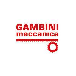 GAMBINI MECCANICA SRL