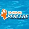 LA CASA DEL PERCEBE