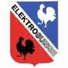 ELEKTROSUISSE