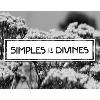 LES SIMPLES ET DIVINES