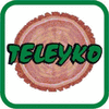 TELEYKO TIMBER EXPORTS