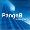 PANGEA E-SOLUTIONS