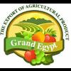 GRAND EGYPT AGRO FOR IMPORT &EXPORT