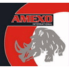 AMEXO INTERNATIONAL