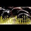 ACEITE SEVILLA