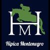 ESCUELA DE EQUITACIÓN MADRID HIPICA MONTENEGRO