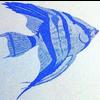JR TROPICAL FISH LTDA