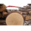 FRUMAX - EUROPEAN TIMBER SOLUTIONS
