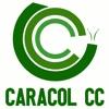 CARACOL CC, LDA