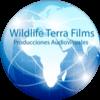 WILDLIFE TERRA FILMS AUDIOVISUALES